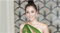 Hoa hậu Tiểu Vy trở thành Đại sứ của tỉnh Quảng Bình