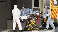 Dịch COVID-19: Hơn 25.000 ca tử vong tại châu Âu