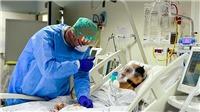DịchCOVID-19: Tổng số ca tử vong tại châu Âu vượt ngưỡng 100.000