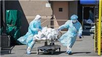 Tình hình dịch COVID-19 ngày 1/6:Tổng số ca nhiễm trên toàn cầu đã lên hơn 6,3 triệu người