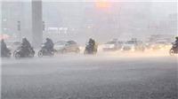 Từ ngày 16/8 - 20/8, vùng núi và trung du Bắc Bộ có nơi mưa rất to
