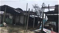 Bão số 13 giật cấp 12 ngay trên bờ biển từ Hà Tĩnh đến Quảng Trị và suy yếu thành áp thấp nhiệt đới trong chiều 15/11