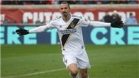 Ibrahimovic: 'World Cup sẽ không còn là World Cup nữa nếu thiếu tôi'