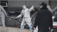 Dịch COVID-19: Hơn 120.000 người tử vong ở châu Âu