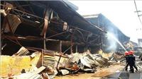 Hoàn thành việc tiêu tẩy hiện trường vụ cháy Công ty Cổ phần Rạng Đông