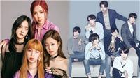 BTS bán album nhiều gấp đôi Twice, Blackpink, Seventeen và Winner cộng lại