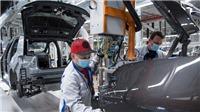 Các hãng sản xuất ô tô ở châu Âu bắt đầu nối lại hoạt động