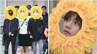 Nam thần hoa hướng dương BTS hóa ra là một hình phạt