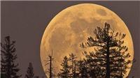 Việt Nam đón siêu trăng vào đêm 9 và 10/3