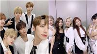 13 màn comeback đáng mong chờ nhất tháng Tám: BTS, Blackpink, ITZY...