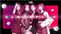 Vượt BTS, Blackpink trở thành Nhóm nhạc của năm tại Hitmakers 2020