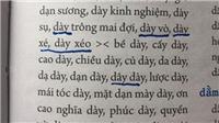 Vì sao 'Từ điển chính tả tiếng Việt' của PGS Hà Quang Năng bị đình chỉ phát hành?