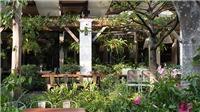 Nhà hàng ở Hà Nội mở phục vụ xuyên Tết, lì xì cho khách hàng suốt tháng Giêng