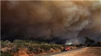 Mỹ: Giải cứu hơn 200 người mắc kẹt do cháy rừng ở California