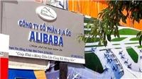 Vụ án Công ty Alibaba lừa đảo: Kê biên 650 thửa đất trị giá gần 1.500 tỷ đồng