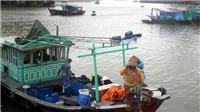 Vùng áp thấp tiếp tục di chuyển, gây mưa to từ Nghệ An đến Thừa Thiên - Huế