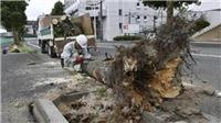 Bão Krosa tiếp tục hoành hành tại Nhật Bản