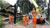 Các tỉnh phía Nam đã khôi phục xong hệ thống lưới điện sau bão số 9
