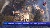VIDEO: Di sản thế giới bị thiêu rụi trong cháy rừng tại Australia