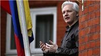 Vụ bắt nhà sáng lập WikiLeaks: Các chuyên gia LHQ chỉ trích mức án 'bất hợp lý'