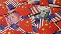 Chiến tranh thương mại Mỹ - Trung và những tác động tới kinh tế Việt Nam - Bài 2: Những góc nhìn