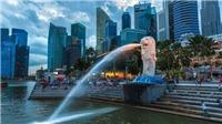 Singapore bắt giữ 3 nữ giúp việc gia đình nghi tài trợ cho khủng bố
