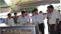 Hà Nội: Tiêu hủy 17.600 bánh Trung Thu không rõ nguồn gốc