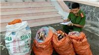 Hưng Yên: Phát hiện 2 xe ô tô chở 6,5 tấn xương động vật thối đi tiêu thụ