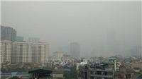 Bộ Tư pháp: Sẽ rà soát, cập nhật số liệu về ô nhiễm môi trường không khí Thủ đô