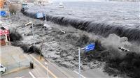 Nhật Bản: Tòa giữ nguyên phán quyết về bồi thường gia đình nạn nhân động đất - sóng thần