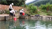Hà Nội: Yêu cầu Công ty nước Sông Đà nghiêm túc thực hiện quản lý, vận hành bể chứa theo quy định, đảm bảo môi trường