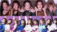 Fan mơ mộng về sân khấu kết hợp giữa Twice và Red Velvet sau khi phát hiện ra điều này