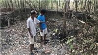 Phát hiện 9 bộ xương cốt dưới ao và trong nhà một người dân ở Tây Ninh