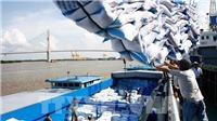 Thủ tướng cho phép hoạt động xuất khẩu gạo trở lại bình thường từ ngày 1/5/2020