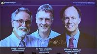 Giải Nobel Y học 2019 vinh danh nghiên cứu mở đường cho điều trị bệnh thiếu máu và ung thư