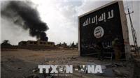 Iraq không kích cứ điểm của IS tại Syria