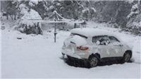 VIDEO: Tuyết phủ trắng xóa giữa mùa hè tại Nga
