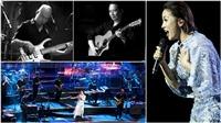 Diva Mỹ Linh: 'Một nền âm nhạc không có những đêm live sẽ rất tụt hậu'