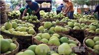 Vụ 'bảo kê' chợ Long Biên (Hà Nội): Sẽ không để chìm xuồng