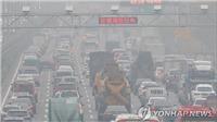 Hyundai triệu hồi gần 79.000 xe do lỗi ở hệ thống khí thải