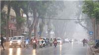 Dự báo thời tiết đêm 15 ngày 16/10: Trung Bộ mưa lớn diện rộng kéo dài