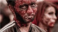 Nguồn gốc căn bệnh 'ăn thịt người' IS gieo rắc ở Trung Đông
