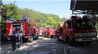 Đà Lạt: Cháy cơ sở sản xuất sâm ngọc linh ở khu vực hồ Tuyền Lâm