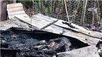 Bắt khẩn cấp đối tượng phóng hỏa khiến hai mẹ con tử vong ngay trên giường ngủ