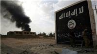 Iraq phạt tù chung thân công dân Pháp và Đức vì gia nhập IS