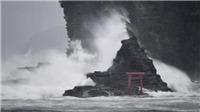 Đêm 29/7, bão Jongdari có khả năng đổ bộ vào các tỉnh phía tây Nhật Bản
