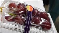 Chùm nho đỏ của Nhật Bản có giá bán kỷ lục