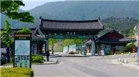 Hàn Quốc chi hàng triệu USD xây làng Việt ở quê HLV Park Hang-seo