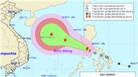 Từ nay đến cuối năm vẫn có 1-3 cơn bão ảnh hưởng trực tiếp đến đất liền nước ta