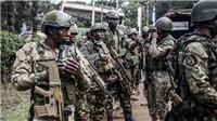Tấn công khủng bố ở Kenya: ít nhất 15 người đã thiệt mạng